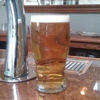 British Tulip Pint Glass