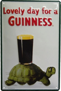 Guinness Turtle #G20
